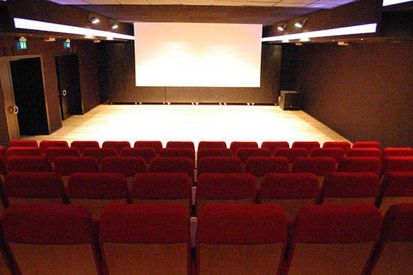 Realizzare sala cinema in casa awesome della televisione - Realizzare sala cinema in casa ...